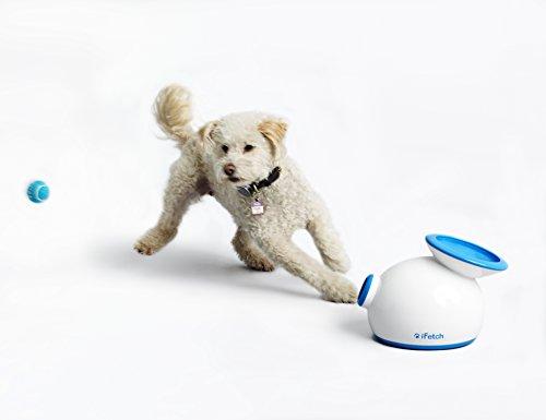 dog lover gift, dog lover gifts