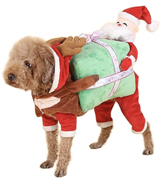dog Christmas outfit - Dog Christmas Outfits & Costumes: 10 Amazingly Cute Options