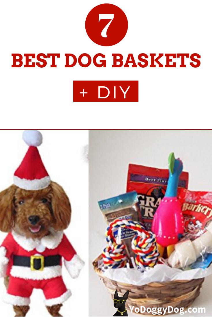Dog Christmas Gift Baskets and Sets: 7 Great Options + DIY