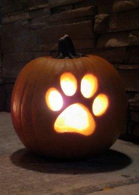 Dog Pumpkin Carving Stencil Ideas