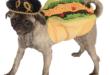 taco dog costume.