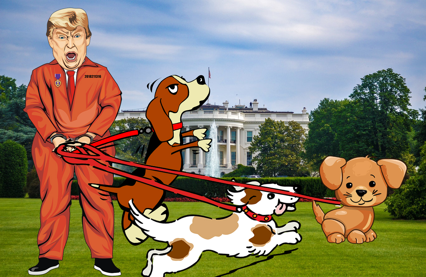 trump dogs