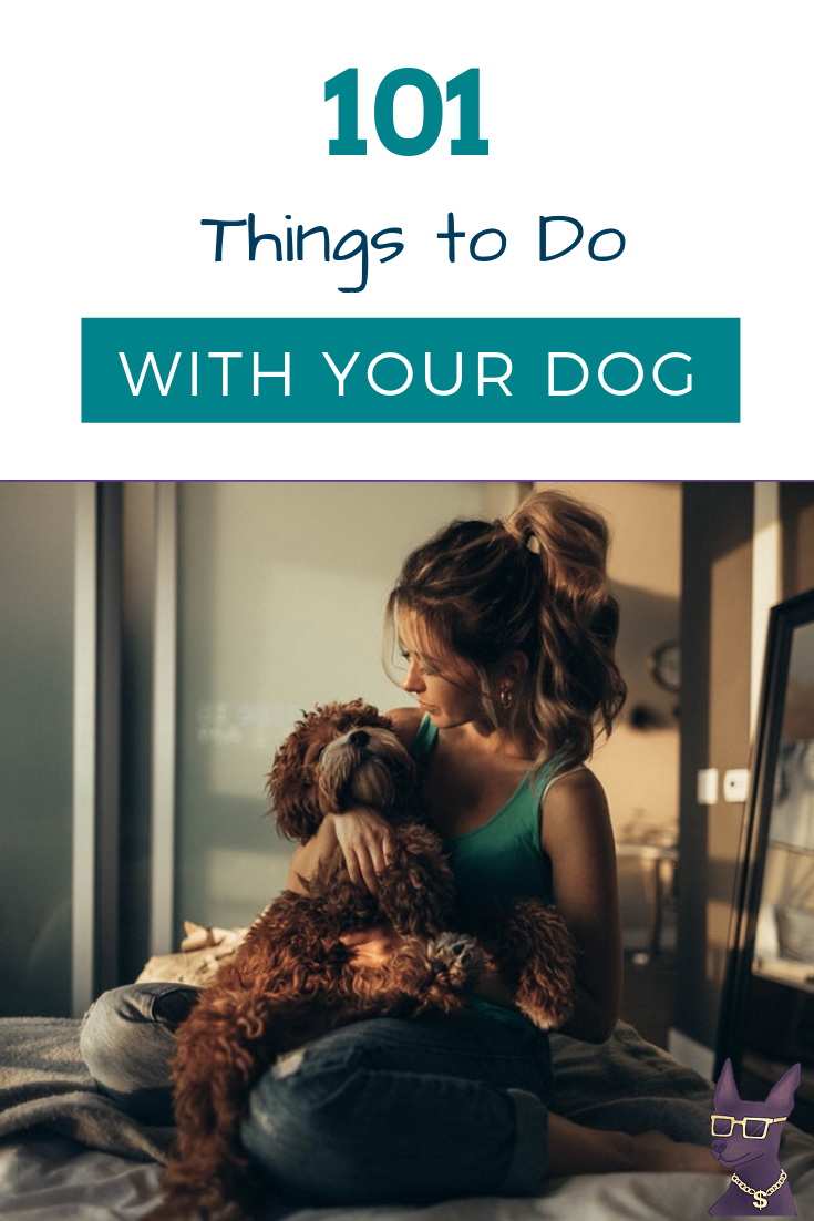 things to do with your dog