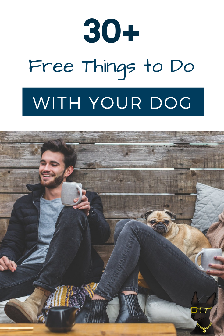 free things to do with your dog